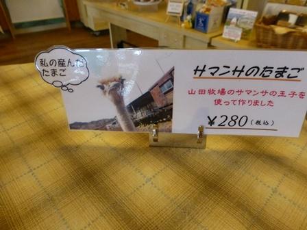 山田牧場37