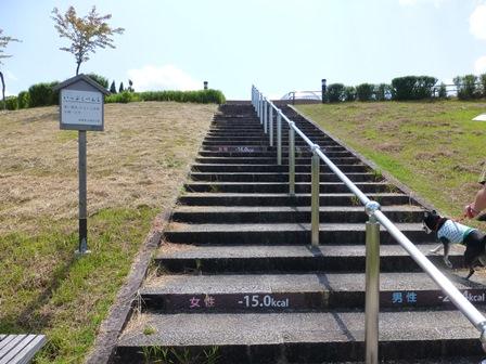 滋賀県立陶芸の森33