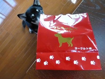 ワンちゃん専用クッキーヨーグルト味 (2)