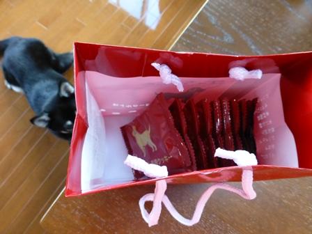 ワンちゃん専用クッキーヨーグルト味 (8)