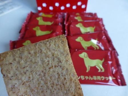 ワンちゃん専用クッキーヨーグルト味 (11)