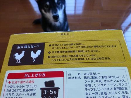 近江鶏カレー2