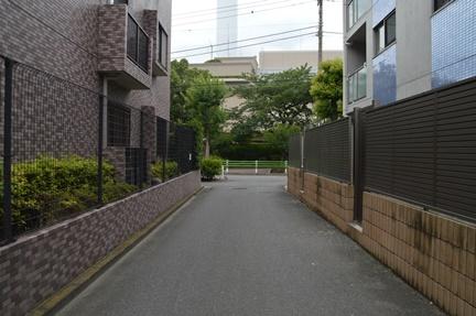 2016-07-23_36.jpg
