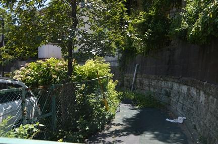2016-07-30_33.jpg