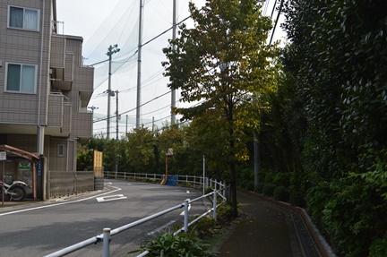 2016-09-25_39.jpg
