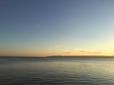 IMG0170jpg海