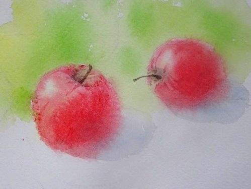 りんご習作1