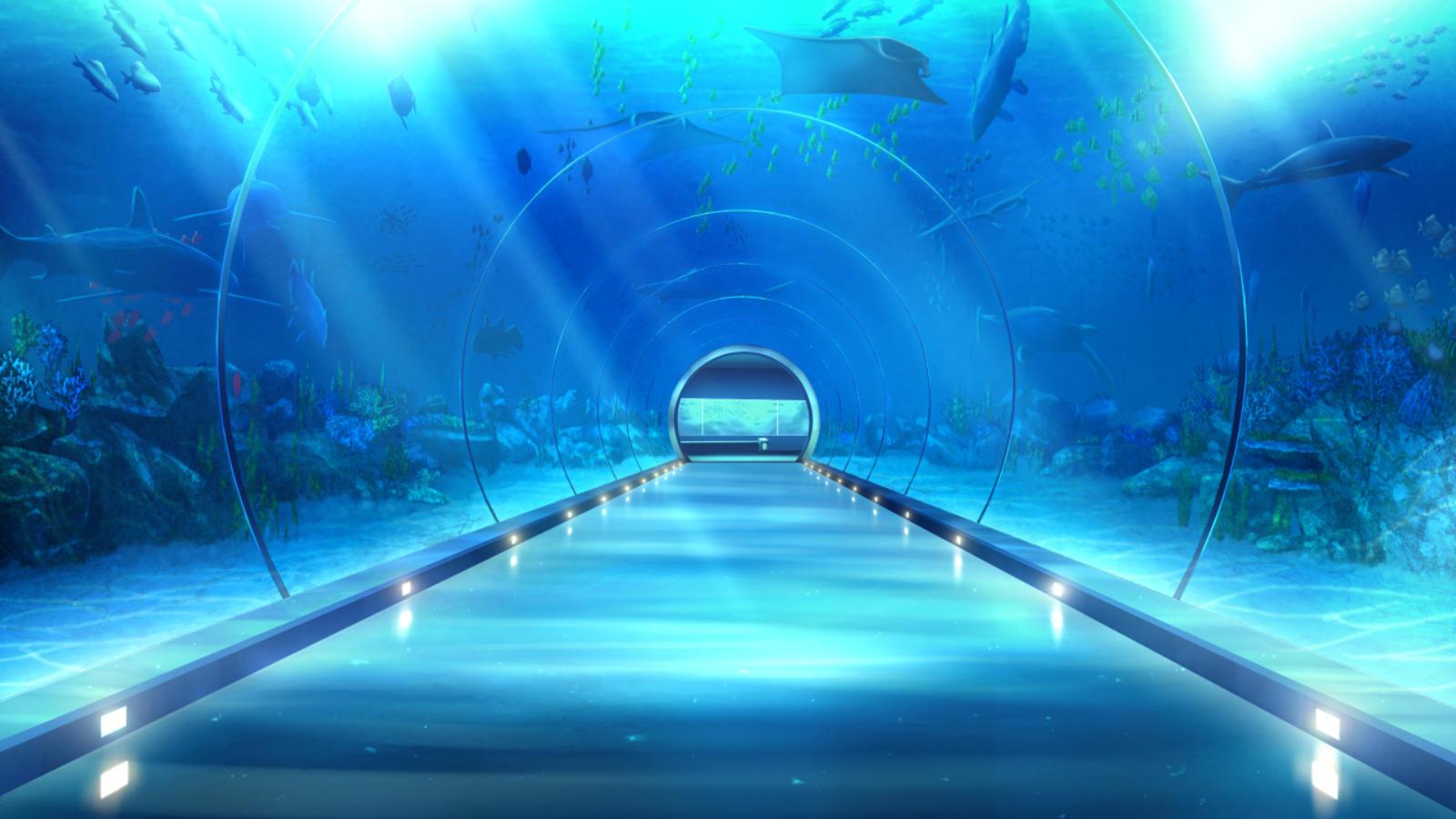 水族館(通路)