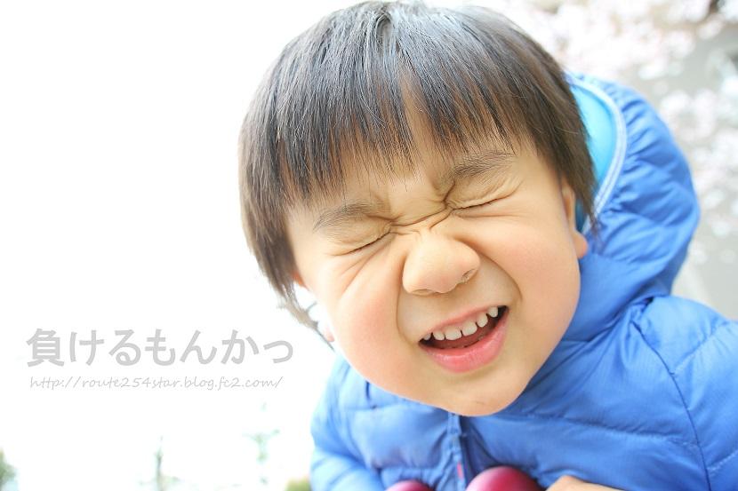 IMG_6684.jpg