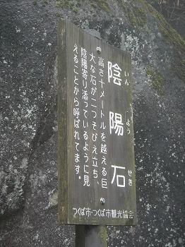 DSCN3869.jpg