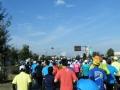 2016上州太田スバルマラソン3