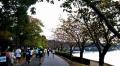 水戸黄門漫遊マラソン36