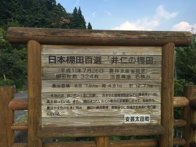 井仁棚田 (1)