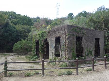 大久野島 (8)