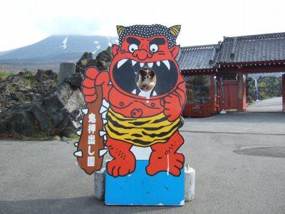 2008_0502軽井沢0277.jpg
