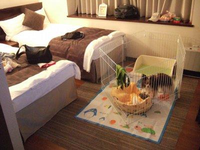 2008_0502軽井沢0287.jpg