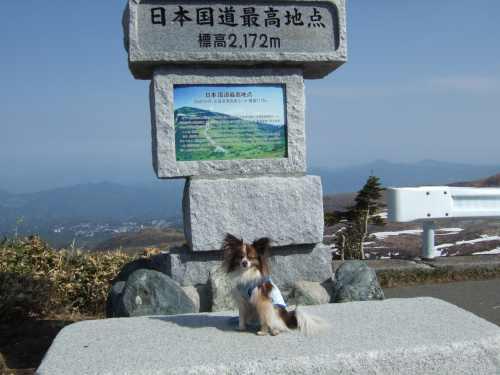 2008_0522伊良湖0081.jpg