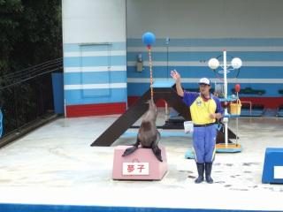 2008_0416鳥羽、伊勢0040.jpg