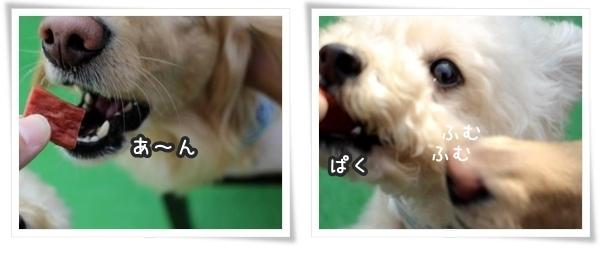 201606091111.jpg