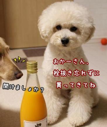 201606130053001.jpg