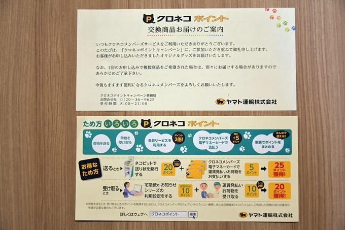 blogDSC_0687.jpg