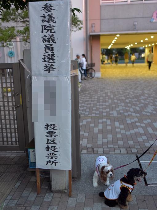 blogDSC_0770.jpg