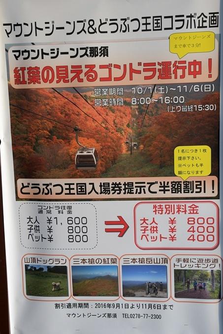 blogDSC_3045_20161106223101b14.jpg
