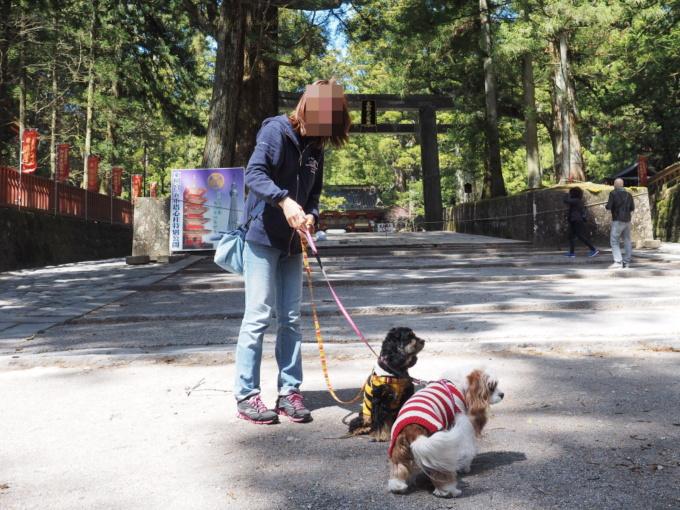 blogP4158999.jpg