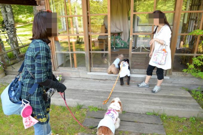 blog_DSC_1046.jpg