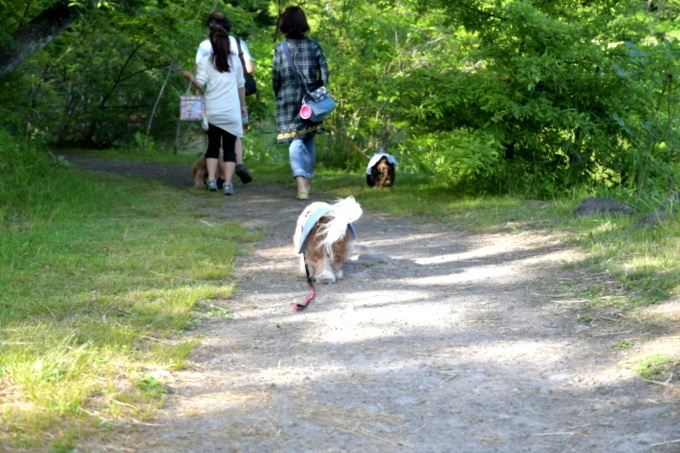 blog_DSC_1418.jpg