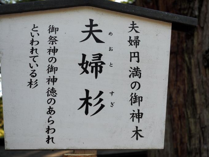 blog_P4159198.jpg