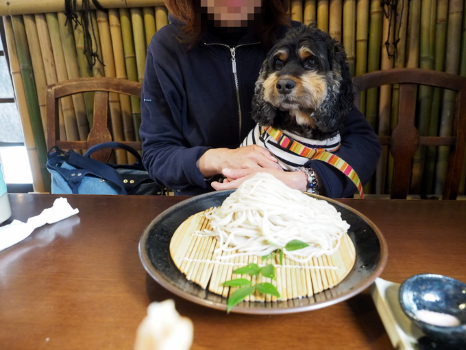 blog_P4169926.jpg
