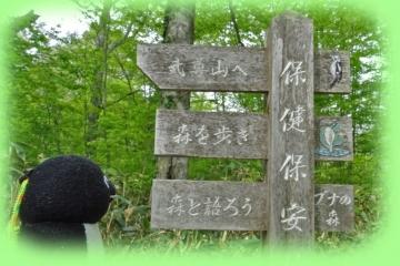 20160521-武尊山 (27)-加工2