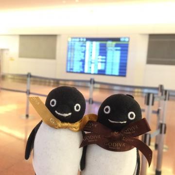 20160514-羽田空港 (1)