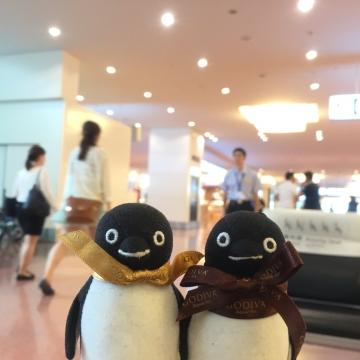20160514-羽田空港 (3)