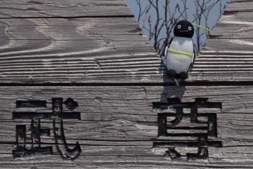 20160521-武尊山 (17)