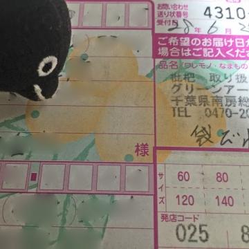 20160628-びわ (3)-加工