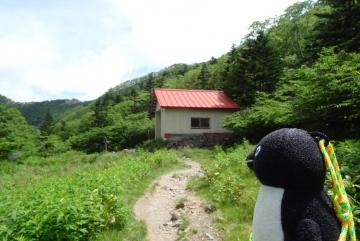 20160723-白根山 (21)