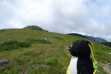 20160723-白根山 (26)