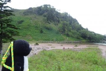 20160723-白根山 (36)