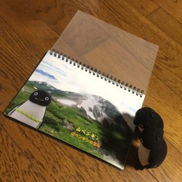 20160827-ヨドバシカメラ (9)
