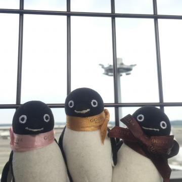 20160917-成田空港 (9)