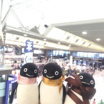 20160917-成田空港 (10)