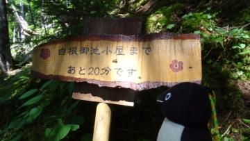 20160820-北岳 (11)