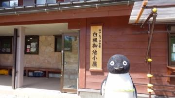20160820-北岳 (15)