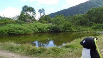 20160820-北岳 (21)