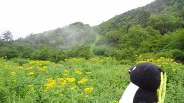 20160820-北岳 (24)