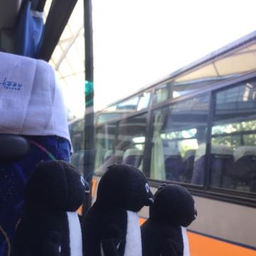 20161015-バス (3)