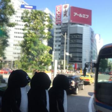 20161015-バス (4)