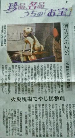 201611-消防犬ぶん公さんより (2)-加工